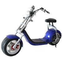 Scooter électrique Harley Bleu