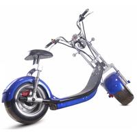 C5-bleu-01