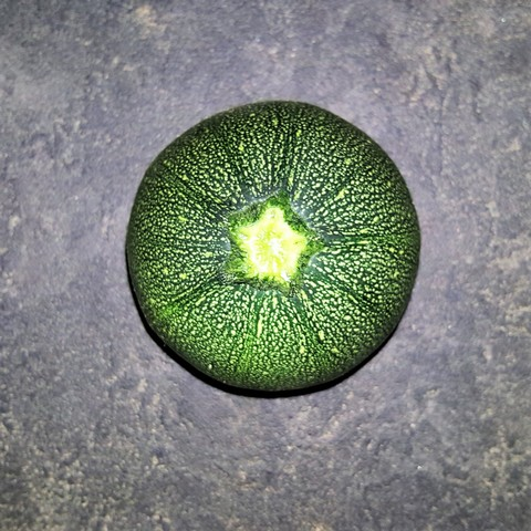 courgettes_rondesV