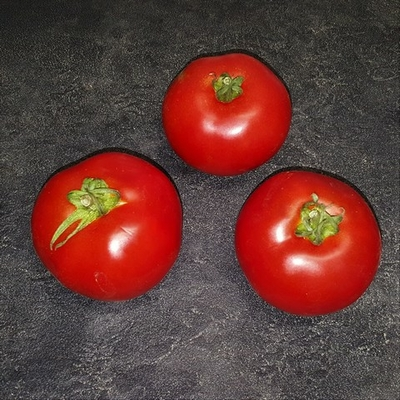 tomates_rondes