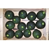 courgettes_rondes2