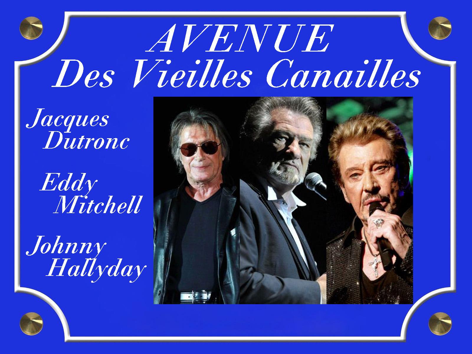 Plaque de Rue Avenue Des Vieilles Canailles