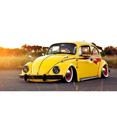 Cox jaune