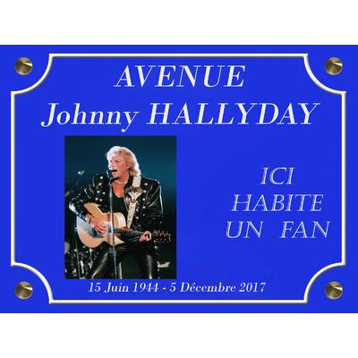 AVENUE Johnny HALLYDAY  GUITARE