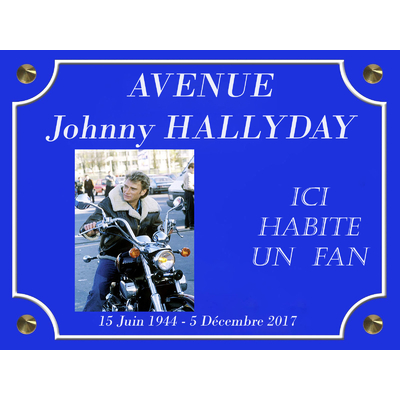 AVENUE Johnny HALLYDAY DAVID LANSKY