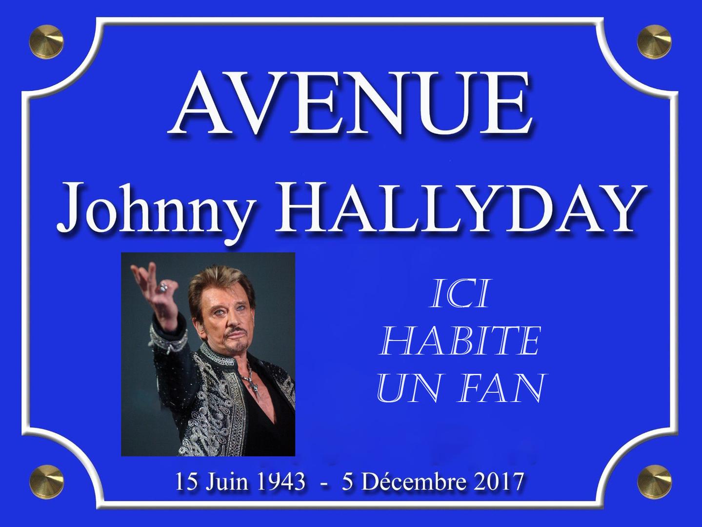AVENUE Johnny HALLYDAY ICI HABITE UN FAN