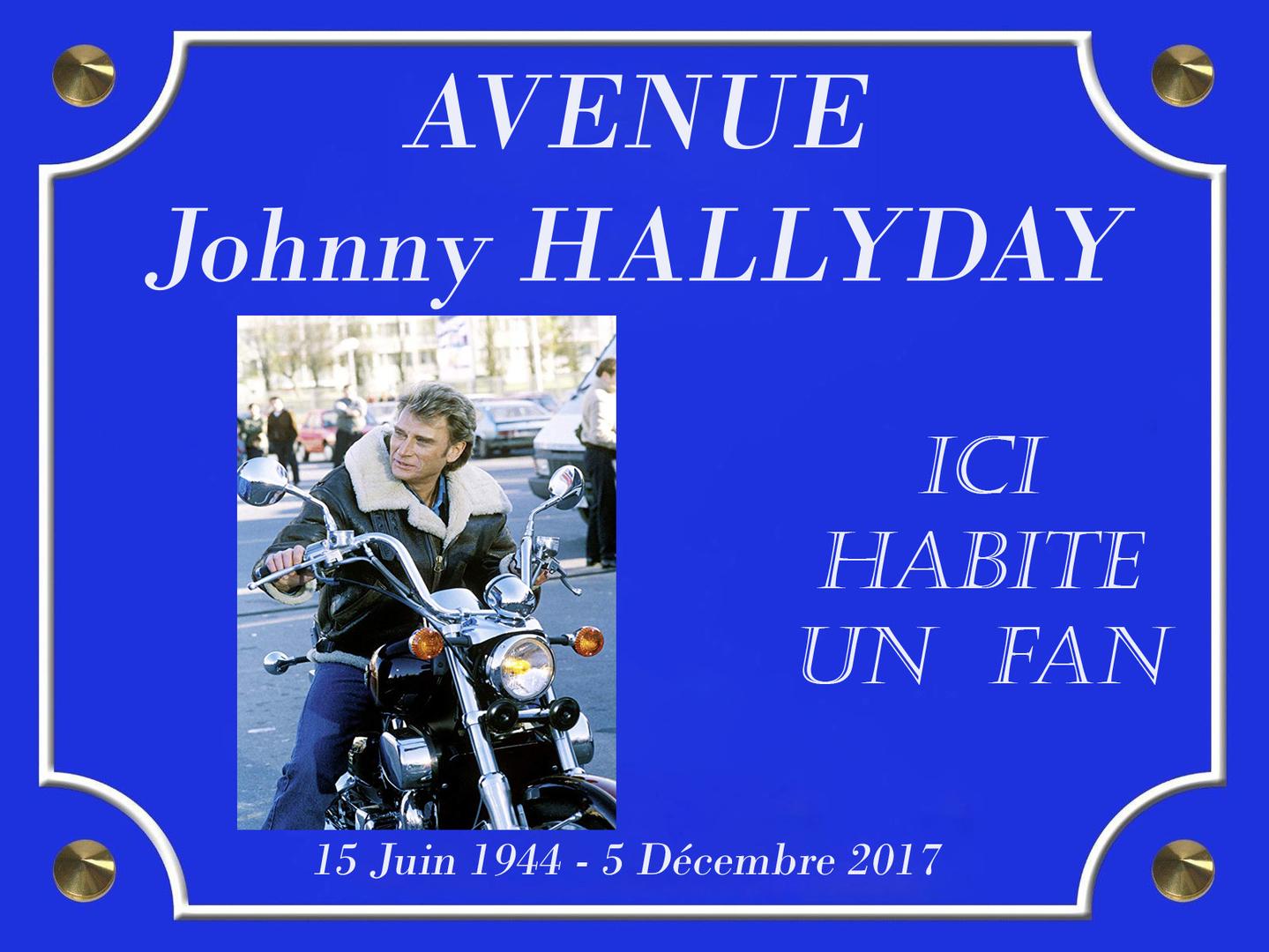 AVENUE Johnny HALLYDAY DAVID LANSKY