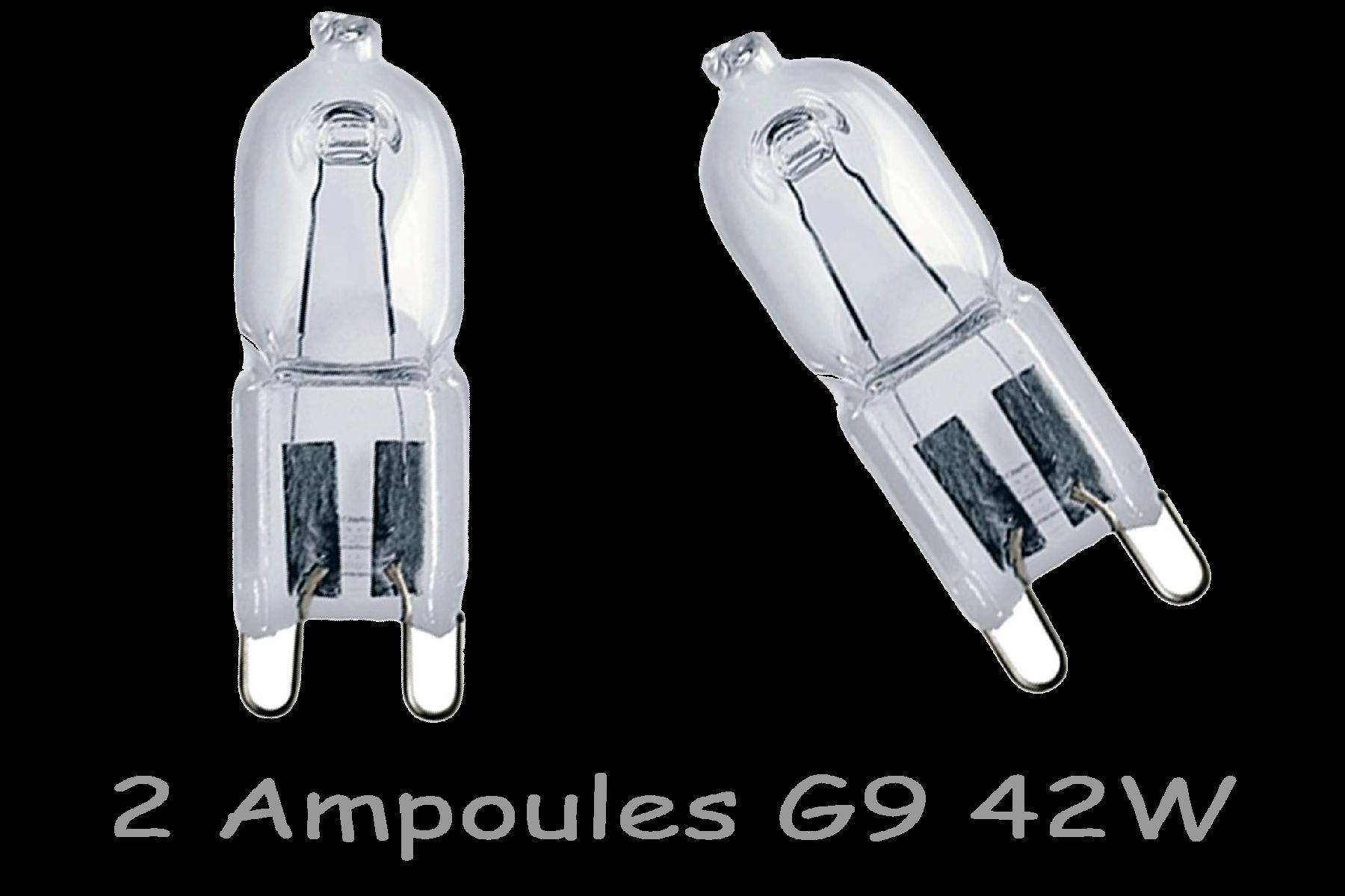 2 Ampoules G9 42W