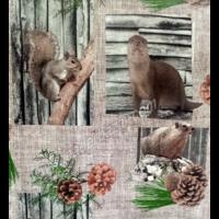 toile cirée motif écureuil