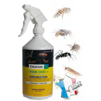 Laque insecticide 1 litre