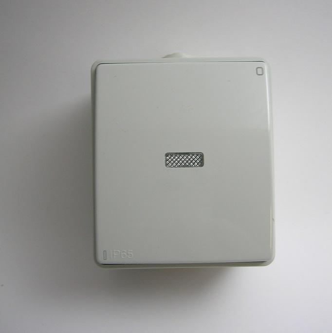 Interrupteur Bipolaire Témoin IP65 Gris ou Blanc