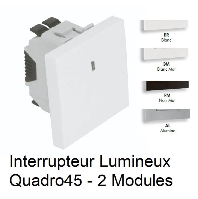 Interrupteur Lumineux Semi Assemblé Quadro45 - 2 Modules