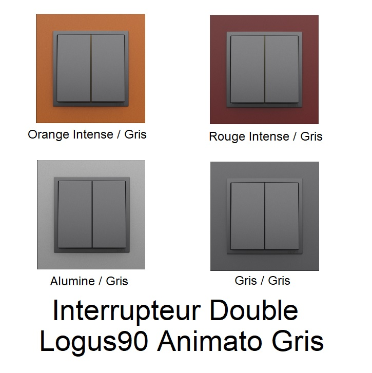 Interrupteur Double Logus90 - Animato Gris
