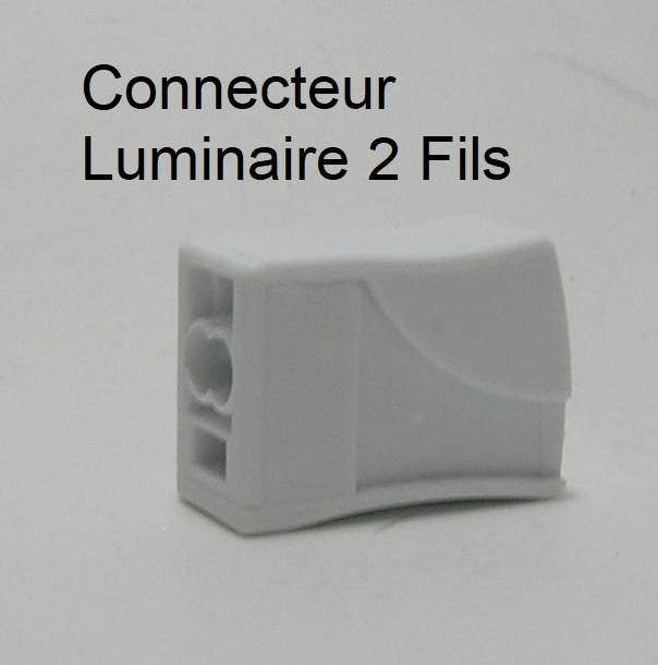 Borne de connexion automatique Fil souple / Fil rigide - 2 trous