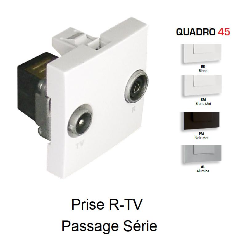 Prise R-TV Passage Série - 2 Modules QUADRO 45