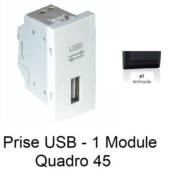 Prise USB Semi-Assemblée - 1 Module - ANTHRACITE