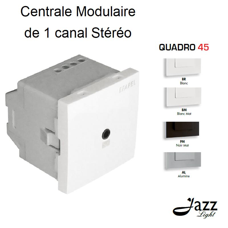 Centrale Modulaire de 1 Canal Stéréo - 2 Modules QUADRO 45