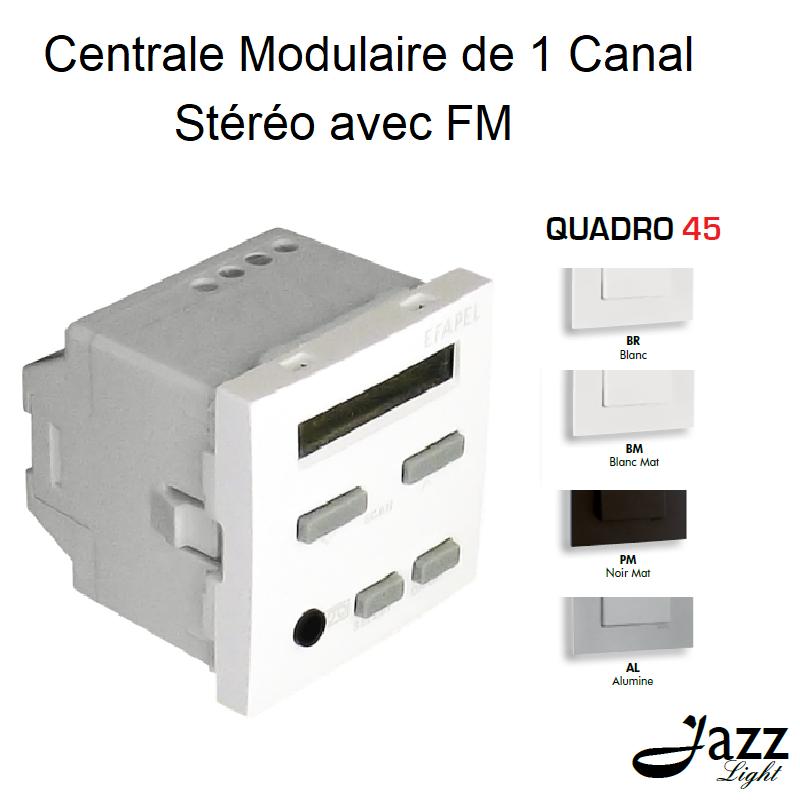 Centrale Modulaire de 1 Canal Stéréo avec FM - 2 Modules QUADRO 45