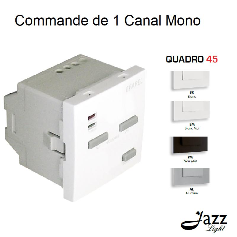 Commande de 1 Canal Mono - 2 Modules QUADRO 45