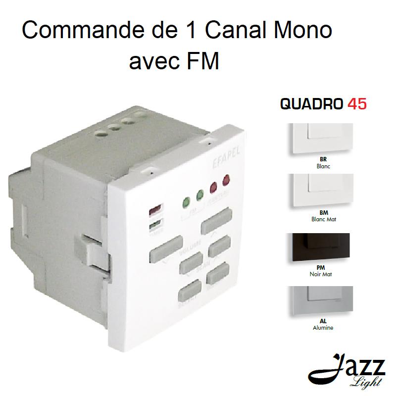Commande de 1 Canal Mono avec FM - 2 Modules QUADRO 45