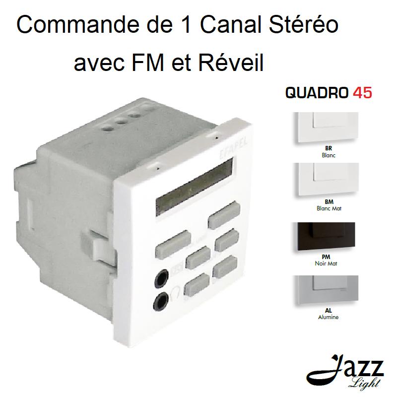 Commande de 1 Canal Stéréo avec FM et Réveil - 2 Modules QUADRO 45