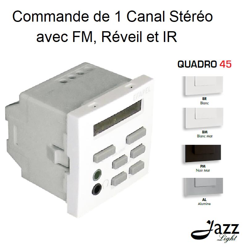 Commande de 1 Canal Stéréo avec FM, Réveil et IR - 2 Modules QUADRO 45