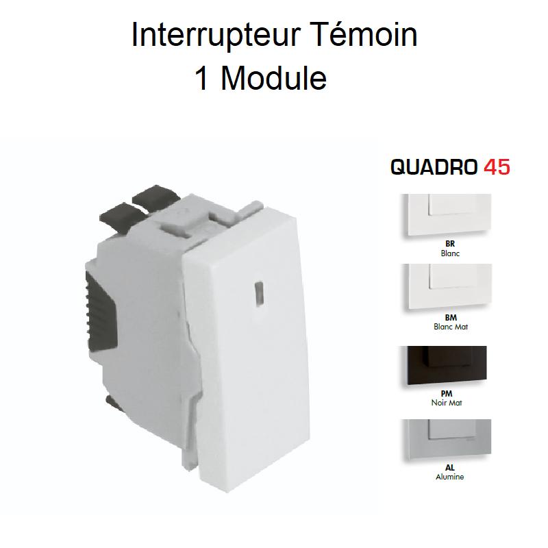 Interrupteur Témoin Semi-Assemblé QUADRO45 - 1 Module