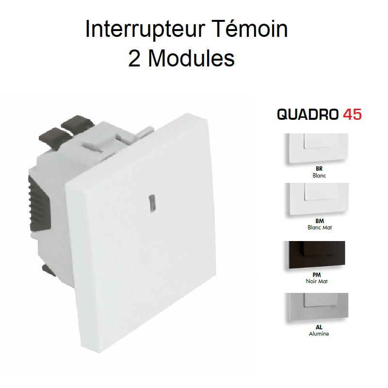 Interrupteur Témoin Semi-Assemblé QUADRO45 - 2 Modules