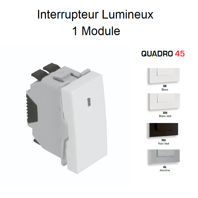 Interrupteur Lumineux Semi-Assemblé QUADRO45 - 1 Module