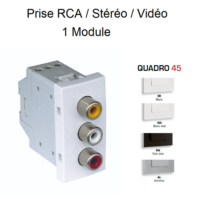 Prise RCA / Vidéo / Stéréo - 1 Module QUADRO 45