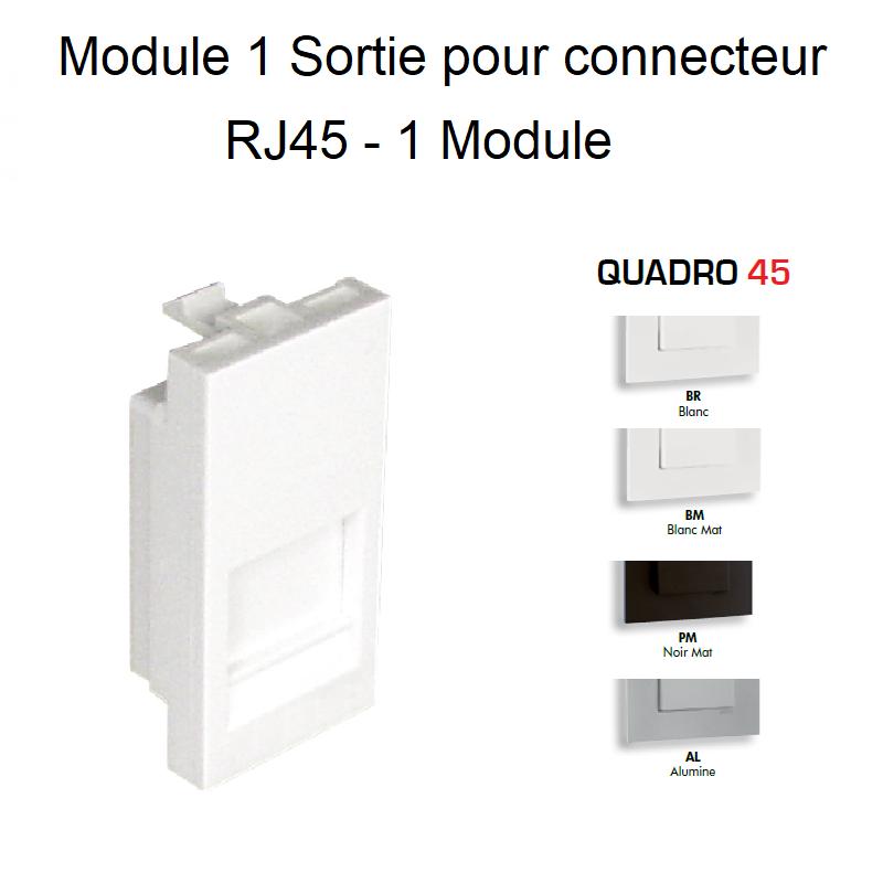 Module simple pour Connecteur RJ45 - 1 Module Quadro45
