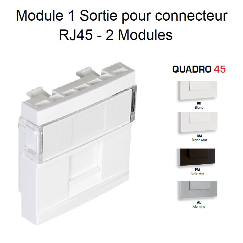 Module 1 Sortie pour Connecteur RJ45 - 2 Modules Quadro45