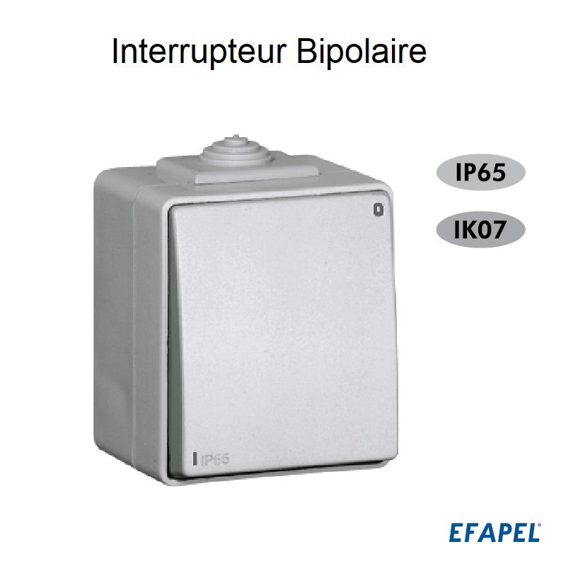 Interrupteur Bipolaire IP65 Gris ou Blanc