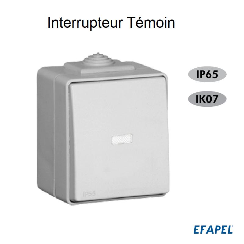 Interrupteur Témoin IP65 Gris ou Blanc