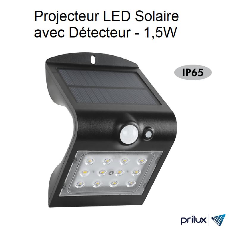 Projecteur LED Solaire avec Détecteur Noir - 1,5W - 4000 kelvin
