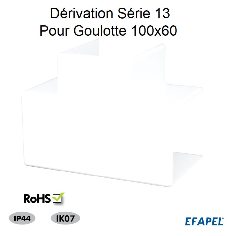 Dérivation pour Goulotte Série 13 - 100x60