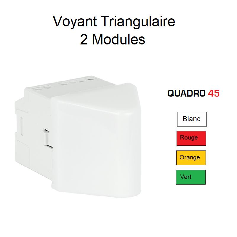 Voyant de Balisage Triangulaire - 2 Modules Quadro 45