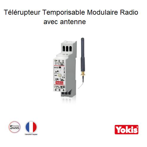 Télérupteur Temporisable 2000W Radio avec Antenne Modulaire MTR2000MRPX