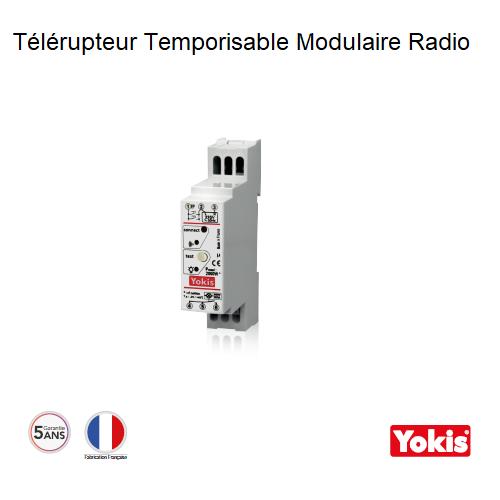 Télérupteur Temporisable 2000W Radio Modulaire MTR2000MRP