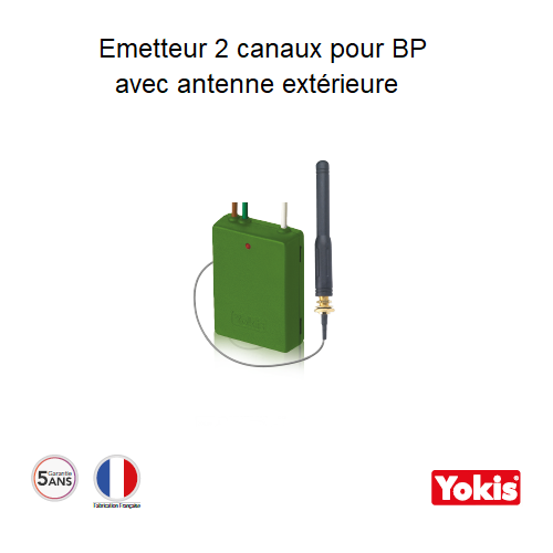Emetteur Radio à encastrer 2 canaux avec antenne - E2BPPX