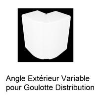 Angle Extérieur Variable pour Goulotte de Distribution Série 10