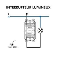 Interrupteur Lumineux semi assemblé Quadro45 - 2 modules 45012S Schéma