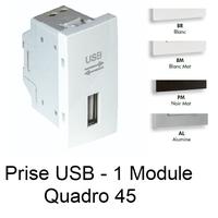 Prise USB Semi-Assemblée Quadro45 - 1 Module