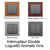 Interrupteur Double Logus90 - Animato Gris