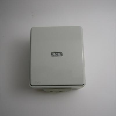 Interrupteur Lumineux IP65 Gris ou Blanc