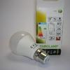 147-80255 Ampoule led A60 B22 Eurolamp-1
