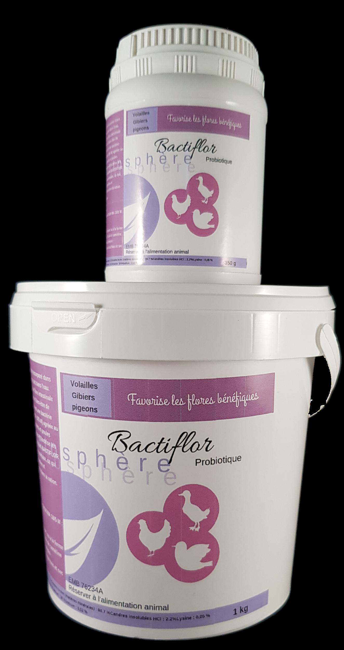Bactiflor Probiotique