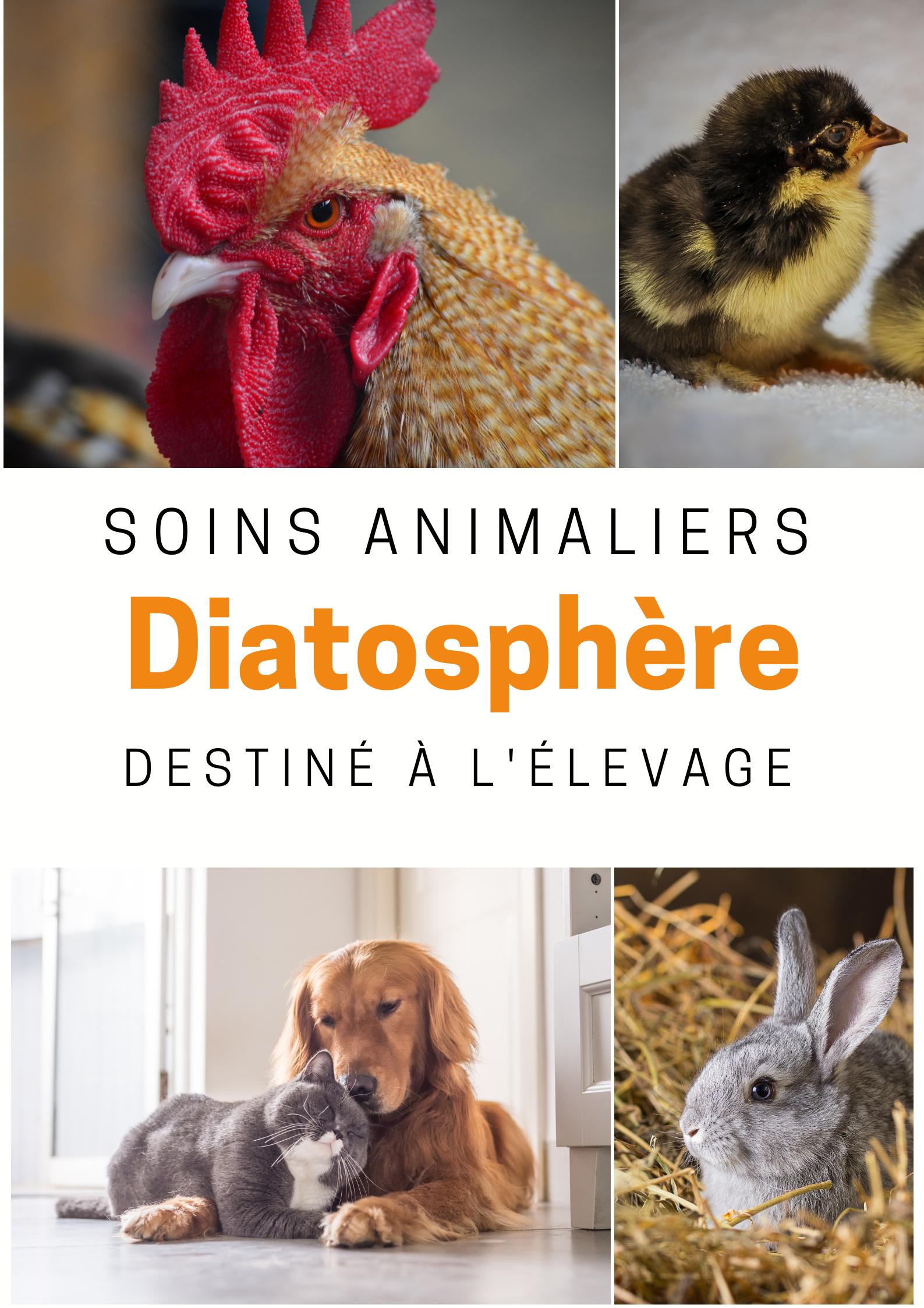 Catalogue diatosphère