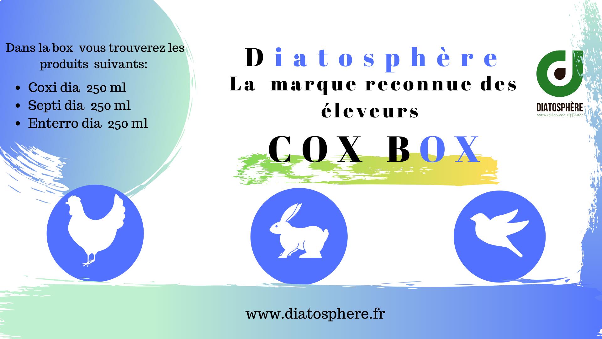 Cox Box