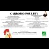 CARBOBIO-POULTRY TECHNIQUE